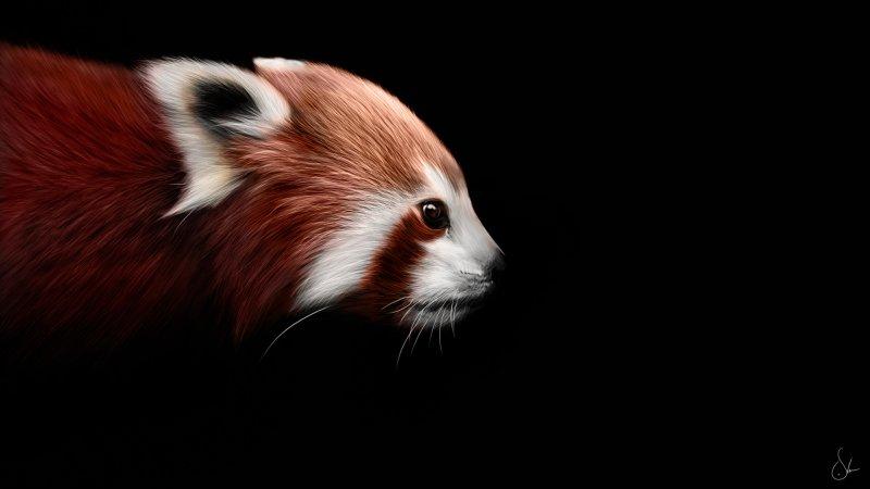 Turbo-режим в Firefox 33