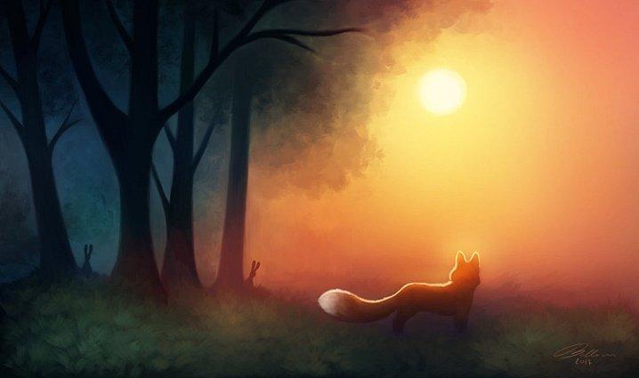 Firefox заглавная картинка